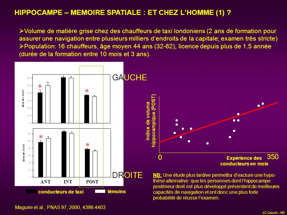 HIPPOCAMPE – MEMOIRE SPATIALE : ET CHEZ L'HOMME (1)
