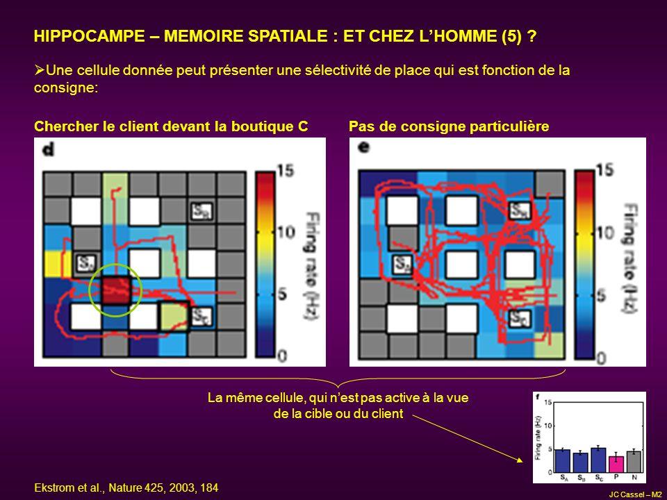 HIPPOCAMPE – MEMOIRE SPATIALE : ET CHEZ L'HOMME (5)