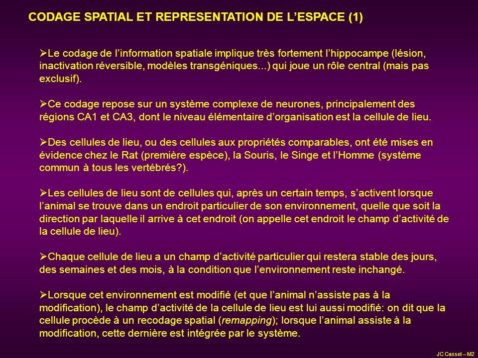 CODAGE SPATIAL ET REPRESENTATION DE L'ESPACE (1)
