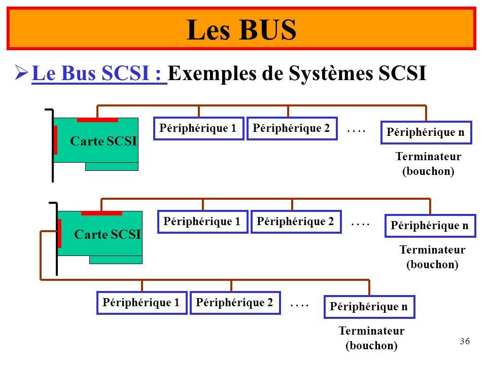 Les BUS Le Bus SCSI : Exemples de Systèmes SCSI …. …. Carte SCSI