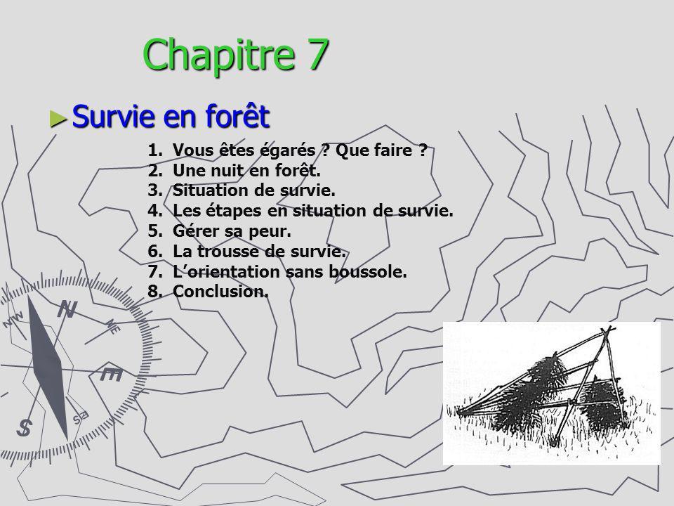 Chapitre 7 Survie en forêt Vous êtes égarés Que faire