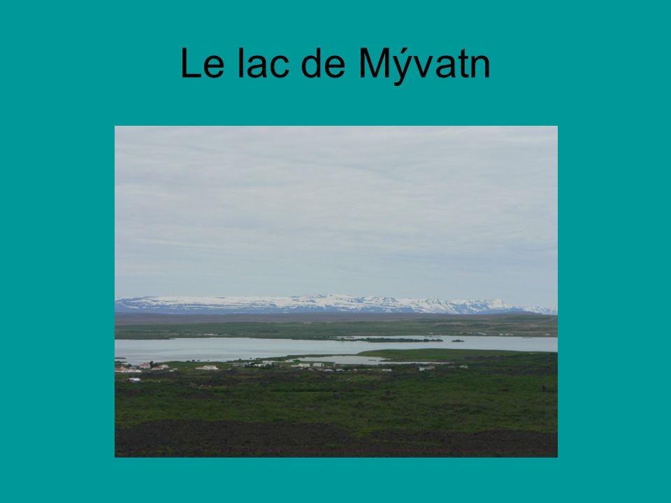 Le lac de Mývatn