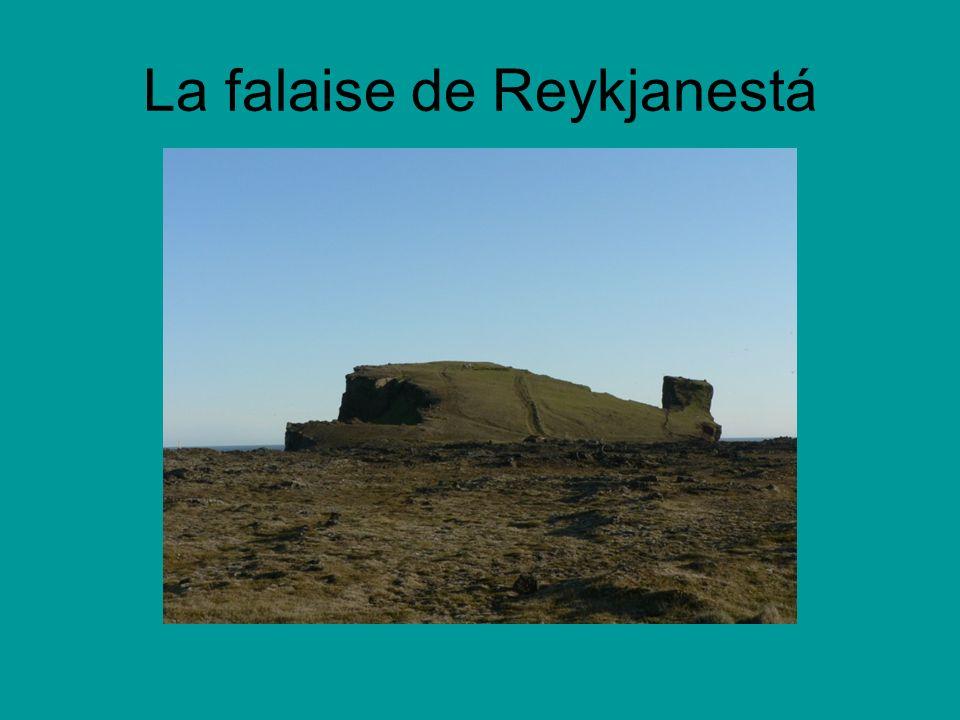 La falaise de Reykjanestá