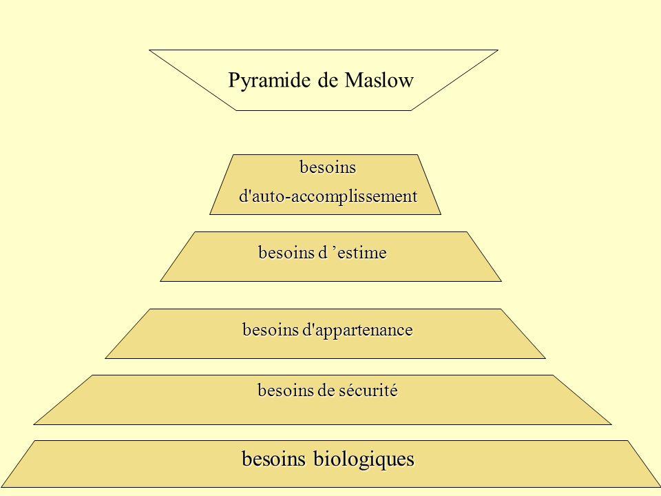 Pyramide de Maslow besoins biologiques besoins d auto-accomplissement