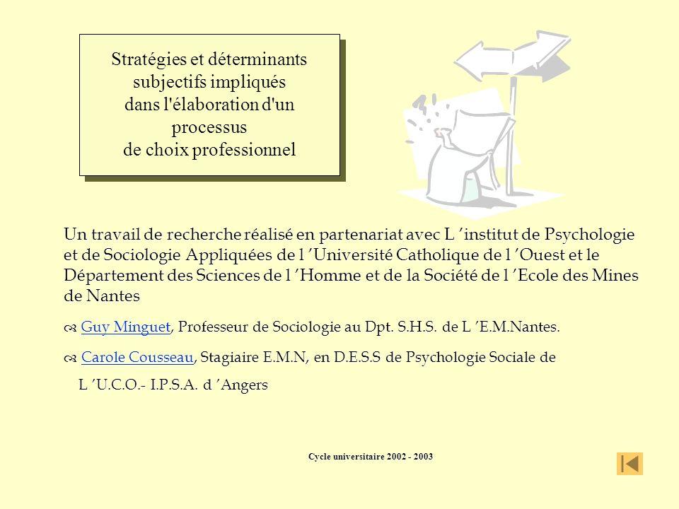 Stratégies et déterminants subjectifs impliqués