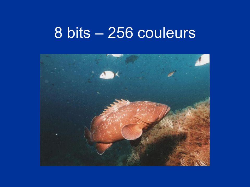 8 bits – 256 couleurs