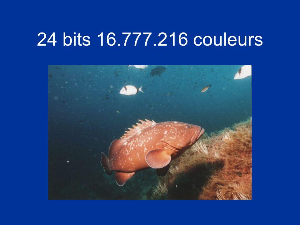 24 bits 16.777.216 couleurs