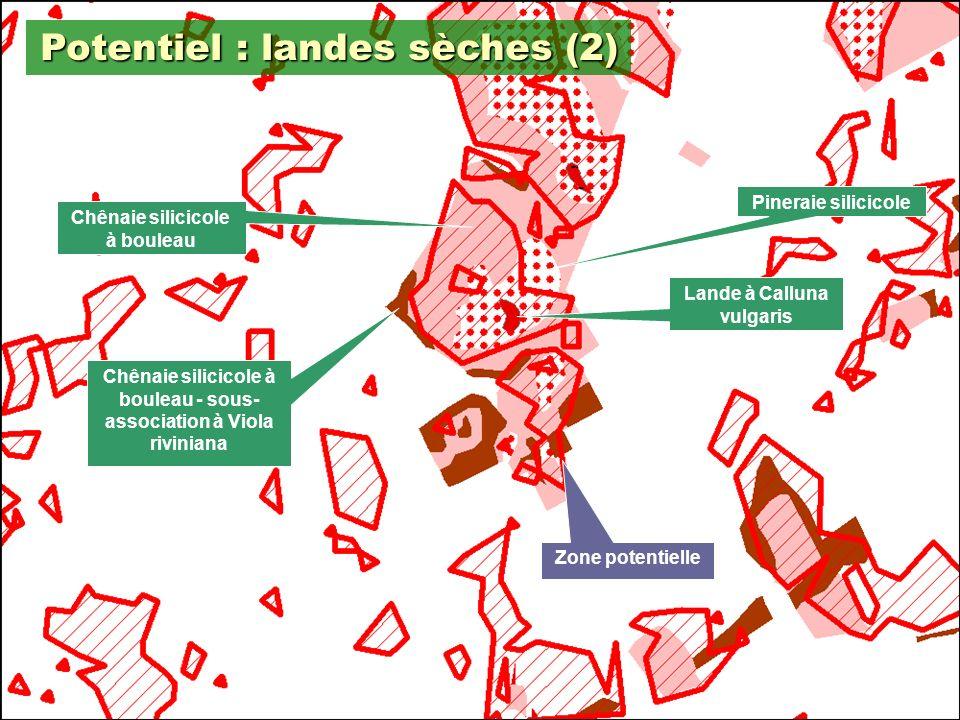 Potentiel : landes sèches (2)
