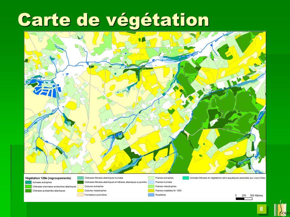 Carte de végétation