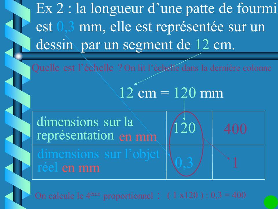 Ex 2 : la longueur d'une patte de fourmi est 0,3 mm, elle est représentée sur un dessin par un segment de 12 cm.