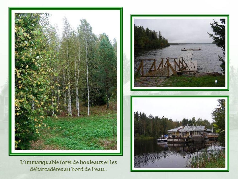L'immanquable forêt de bouleaux et les débarcadères au bord de l'eau..