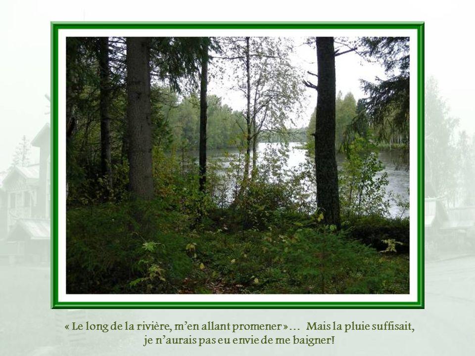 « Le long de la rivière, m'en allant promener »… Mais la pluie suffisait, je n'aurais pas eu envie de me baigner!