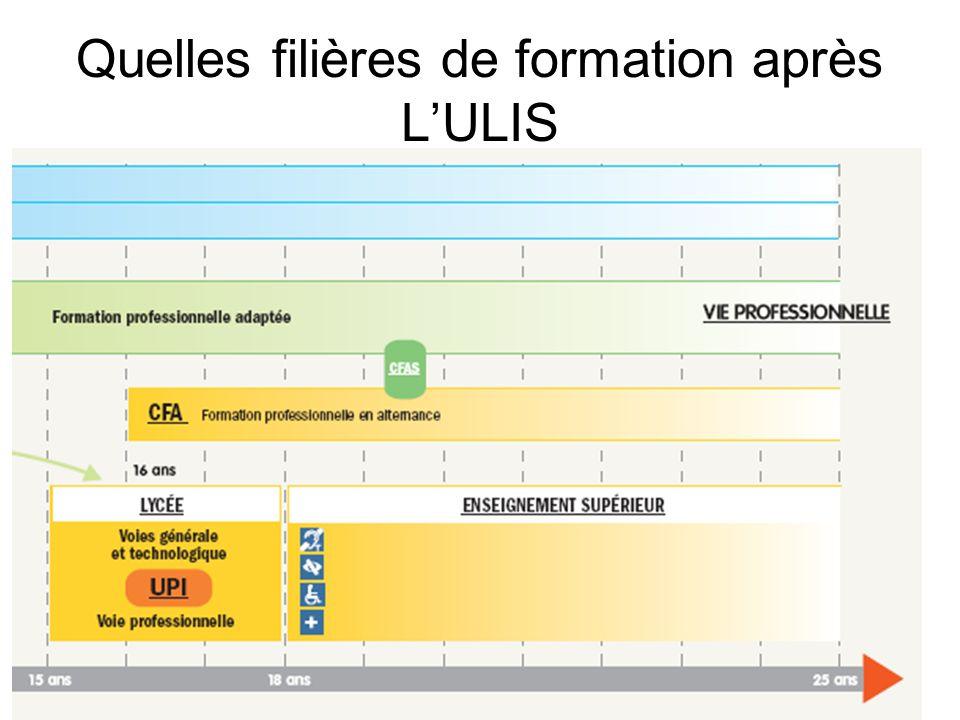 Quelles filières de formation après L'ULIS