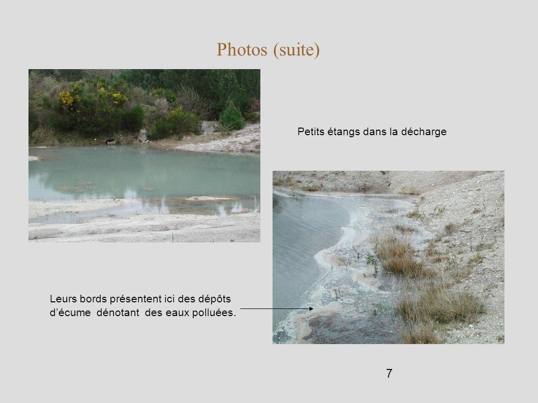 Photos (suite) Petits étangs dans la décharge