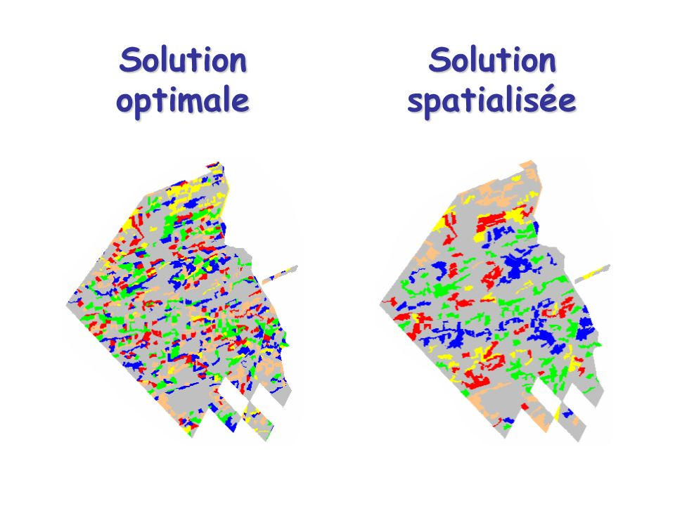 Solution optimale Solution spatialisée