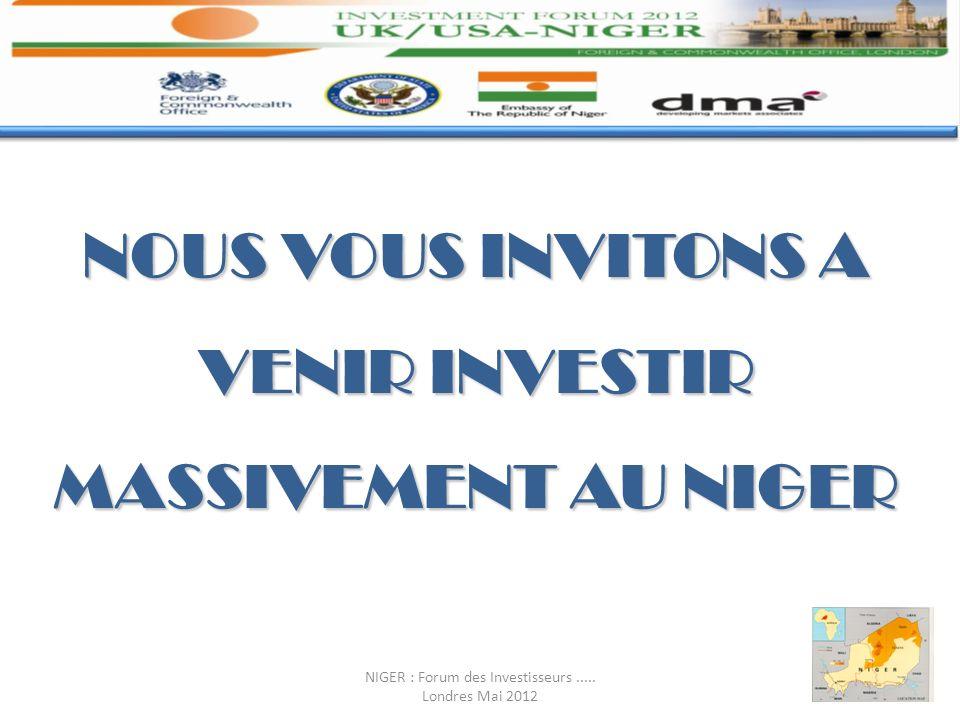 NOUS VOUS INVITONS A VENIR INVESTIR MASSIVEMENT AU NIGER