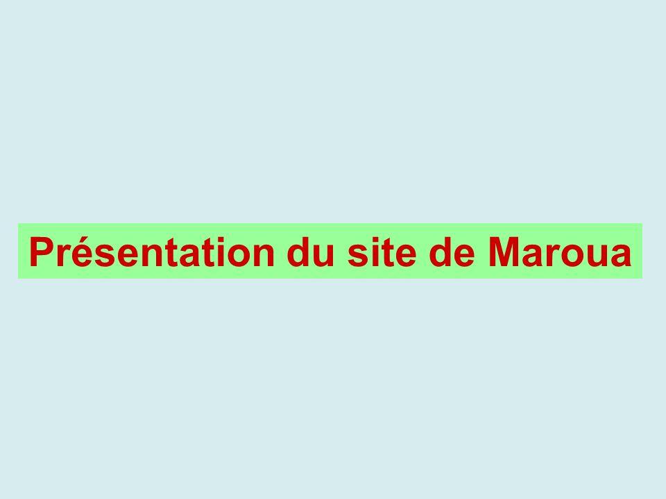 Présentation du site de Maroua