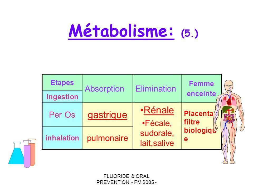 Métabolisme: (5.) gastrique Rénale Absorption Elimination Per Os