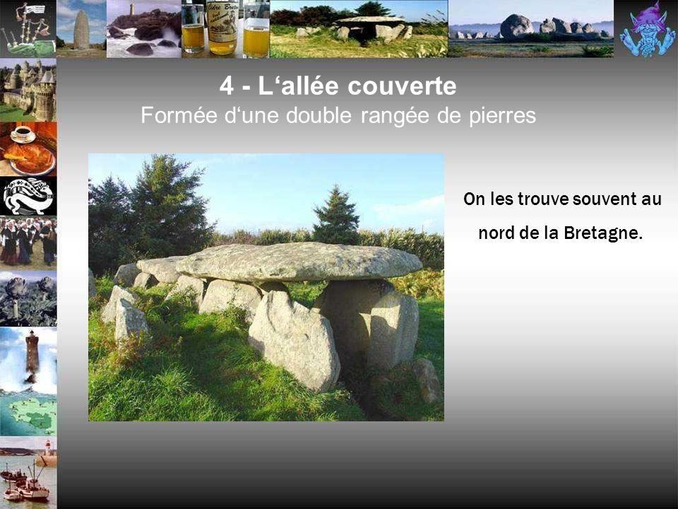 4 - L'allée couverte Formée d'une double rangée de pierres