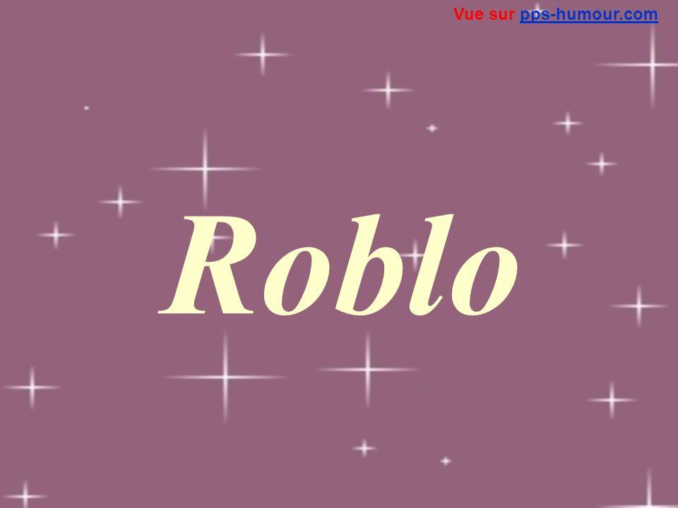 Vue sur pps-humour.com Roblo