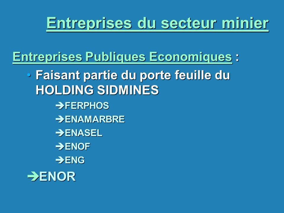 Entreprises du secteur minier