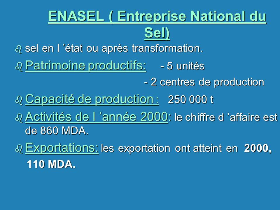 ENASEL ( Entreprise National du Sel)
