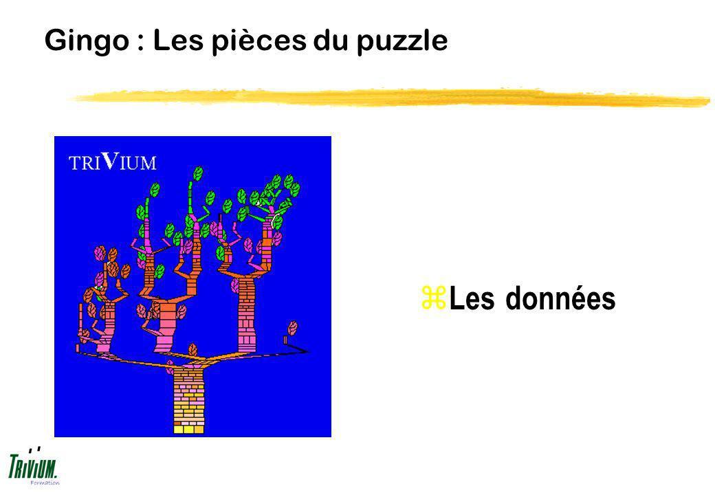 Gingo : Les pièces du puzzle