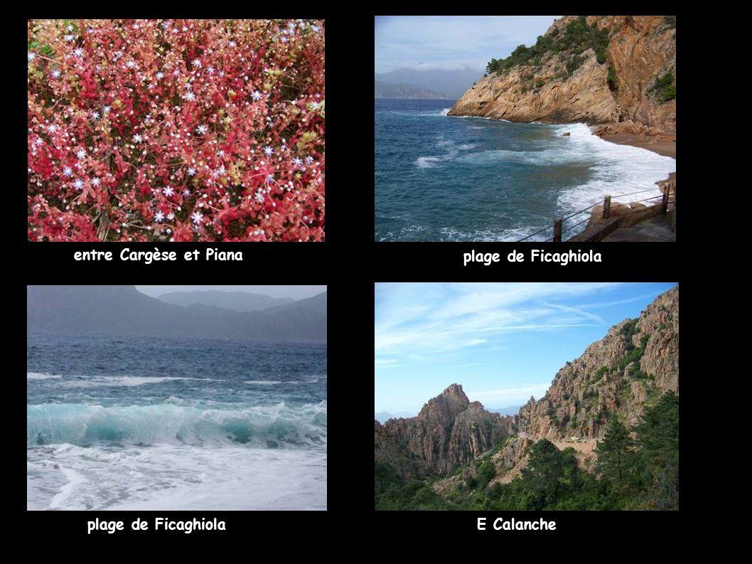 entre Cargèse et Piana plage de Ficaghiola plage de Ficaghiola E Calanche