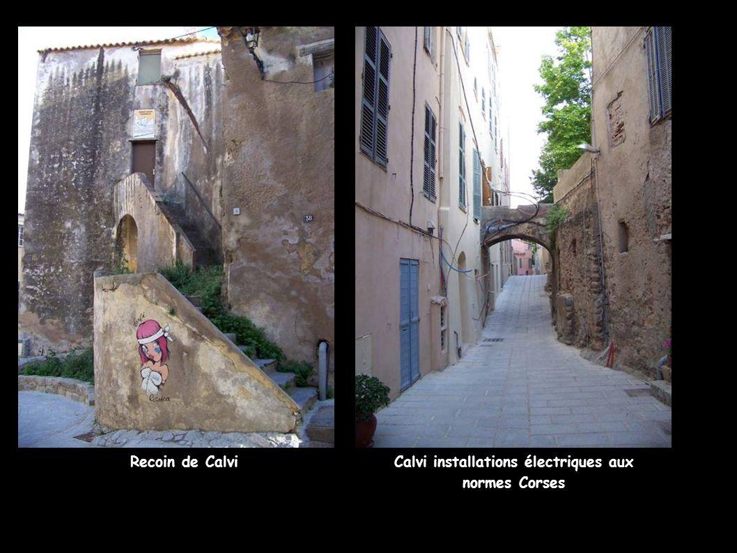 Calvi installations électriques aux normes Corses
