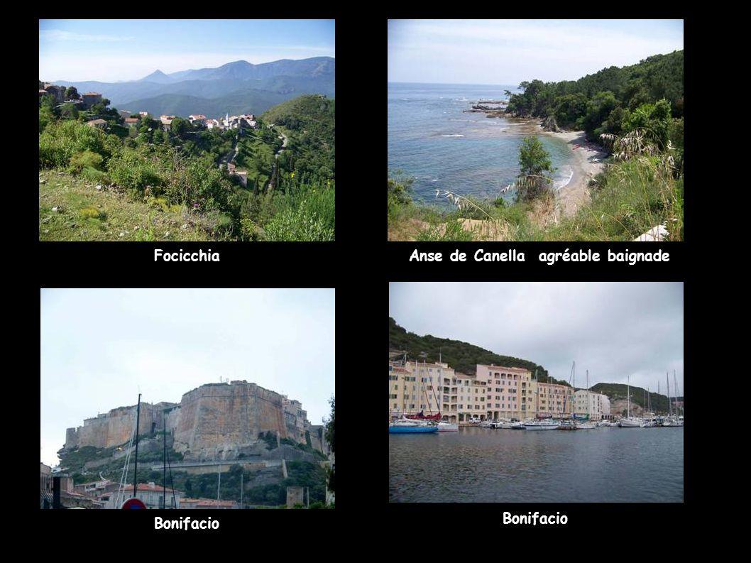 Focicchia Anse de Canella agréable baignade Bonifacio Bonifacio
