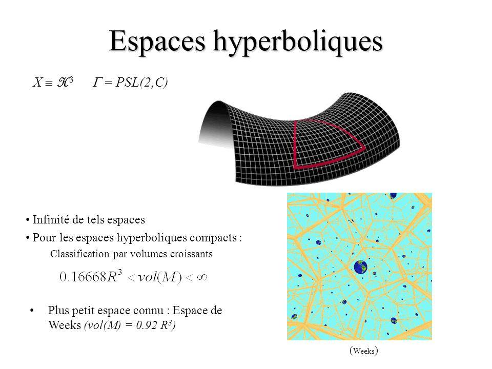 Espaces hyperboliques