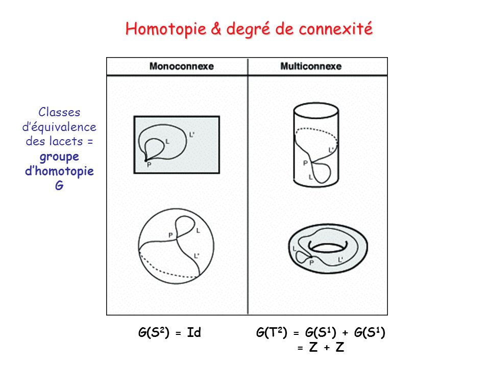 Homotopie & degré de connexité