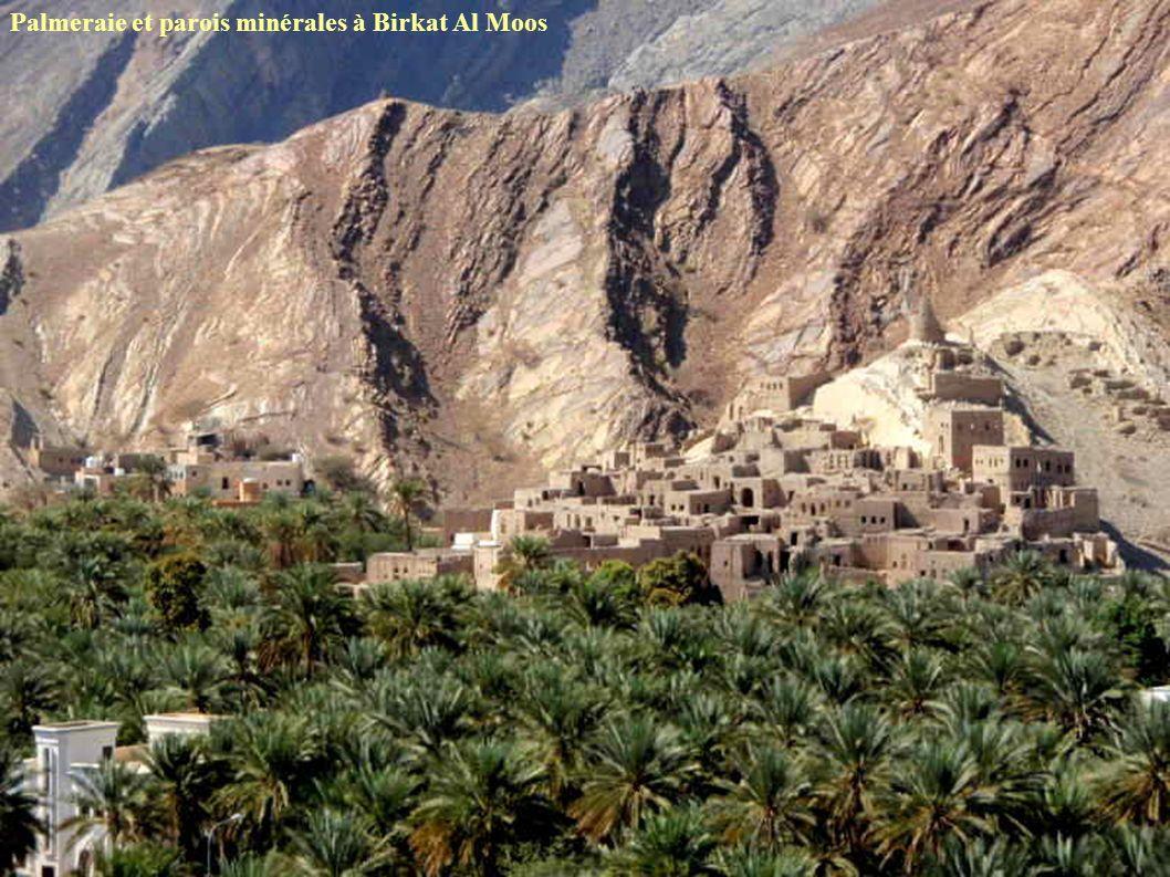 Palmeraie et parois minérales à Birkat Al Moos