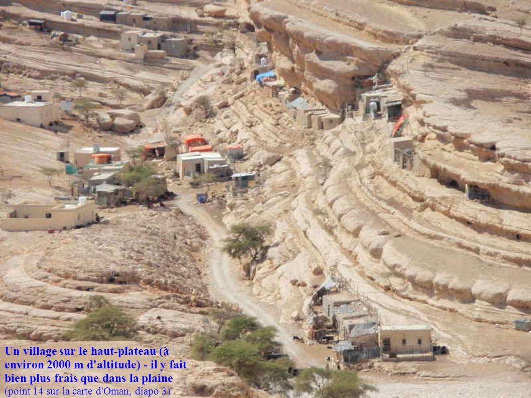 Un village sur le haut-plateau (à environ 2000 m d altitude) - il y fait bien plus frais que dans la plaine (point 14 sur la carte d Oman, diapo 3)
