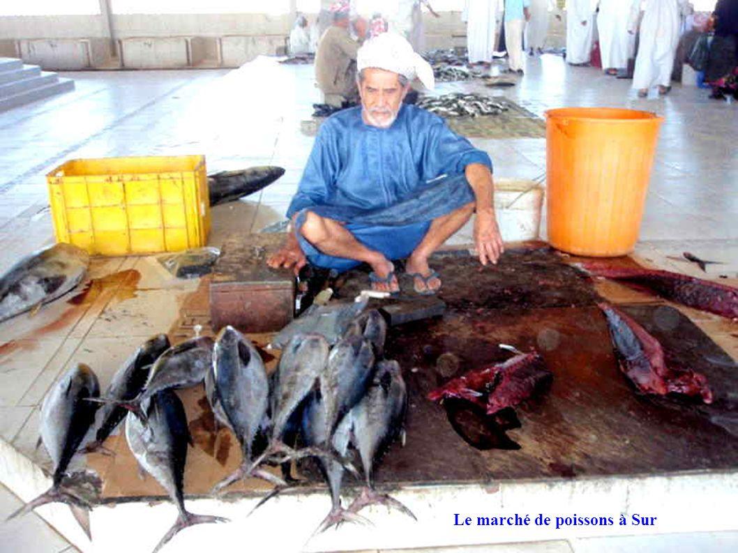 Le marché de poissons à Sur