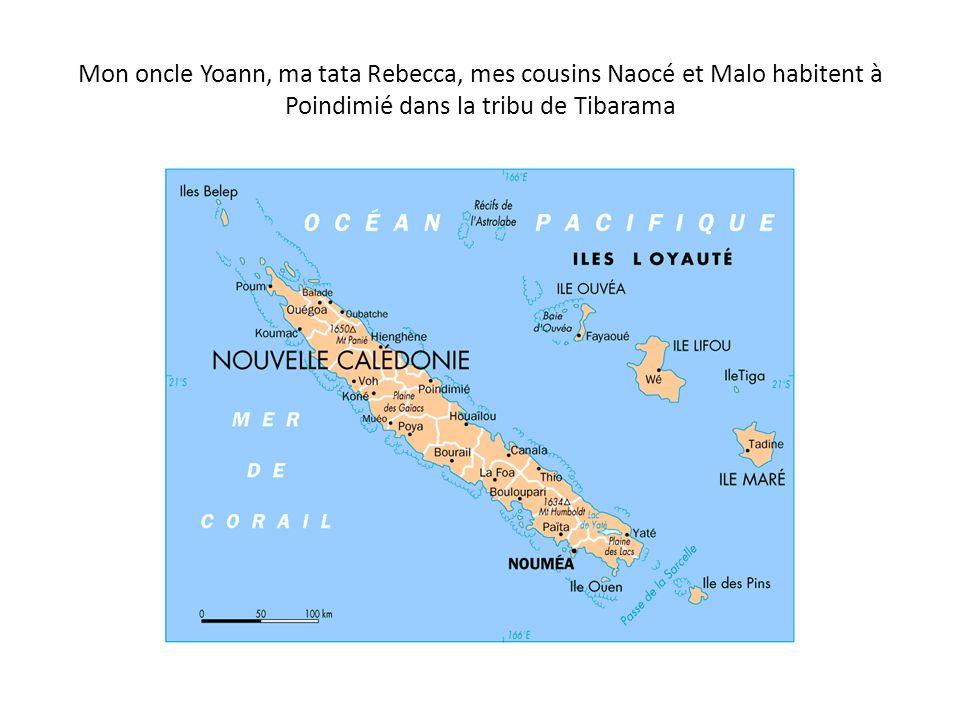 Mon oncle Yoann, ma tata Rebecca, mes cousins Naocé et Malo habitent à Poindimié dans la tribu de Tibarama