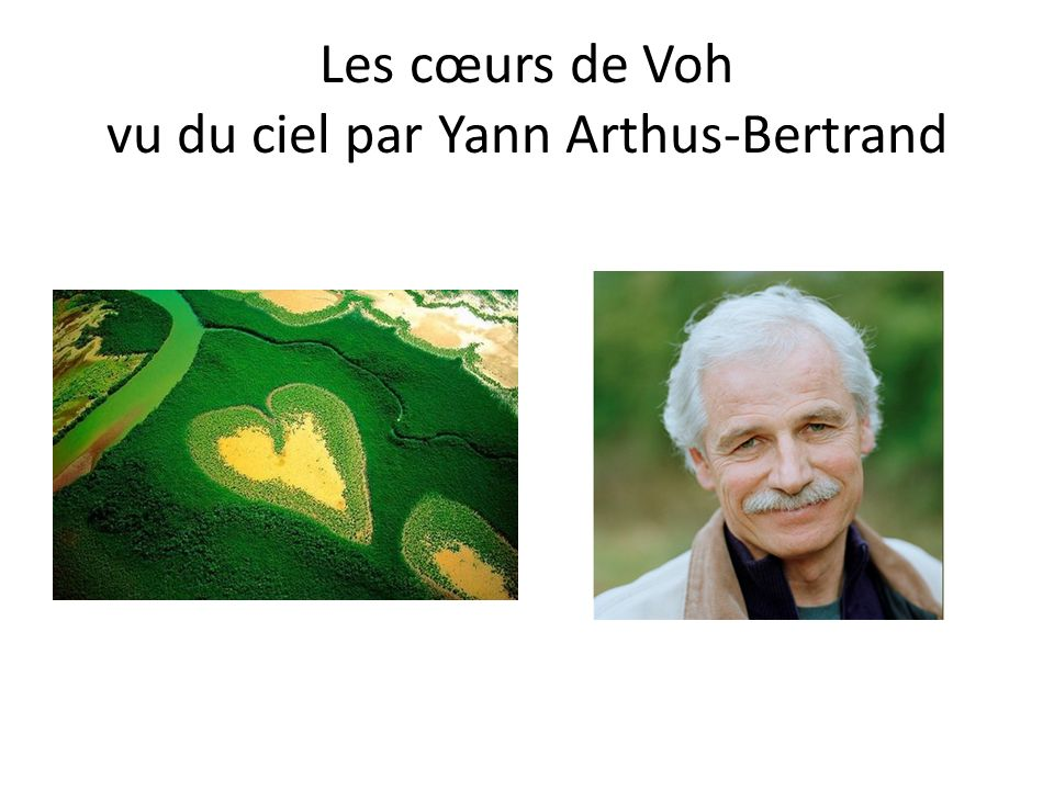 Les cœurs de Voh vu du ciel par Yann Arthus-Bertrand