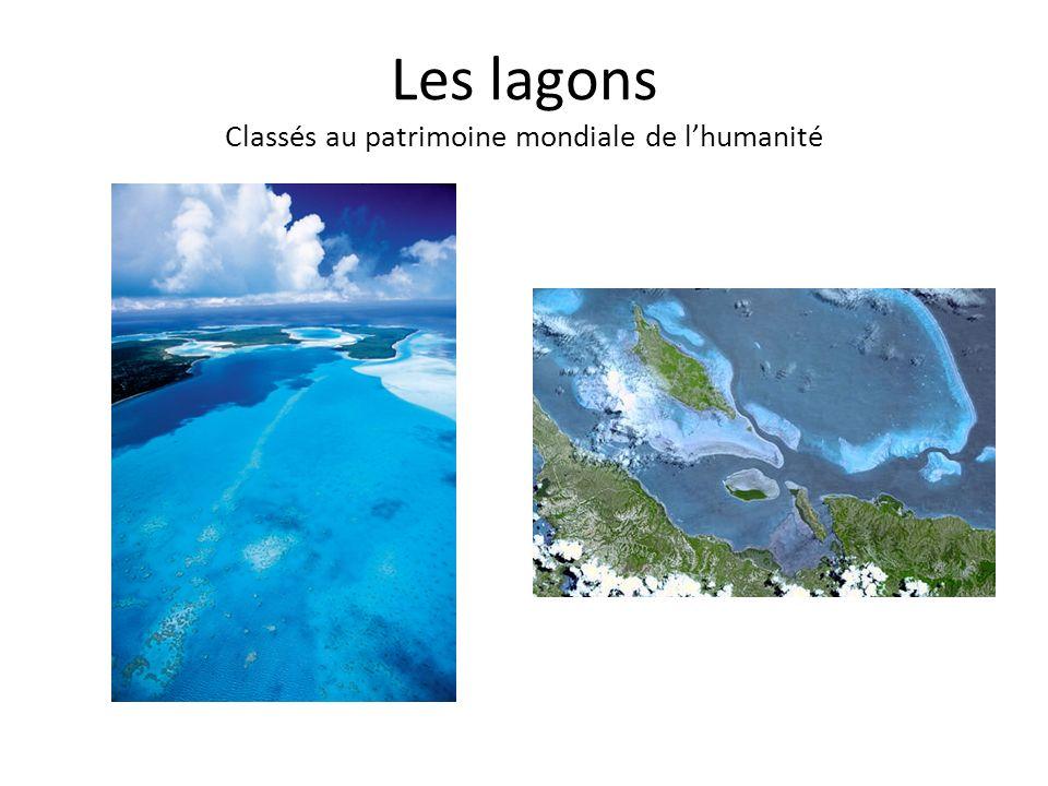Les lagons Classés au patrimoine mondiale de l'humanité