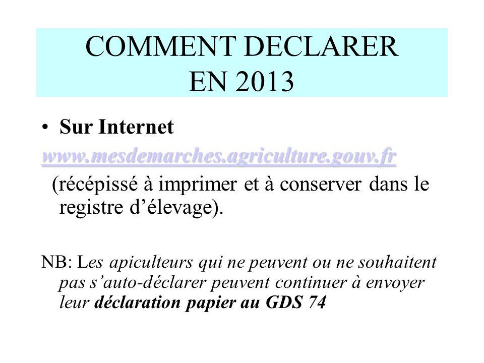 COMMENT DECLARER EN 2013 Sur Internet