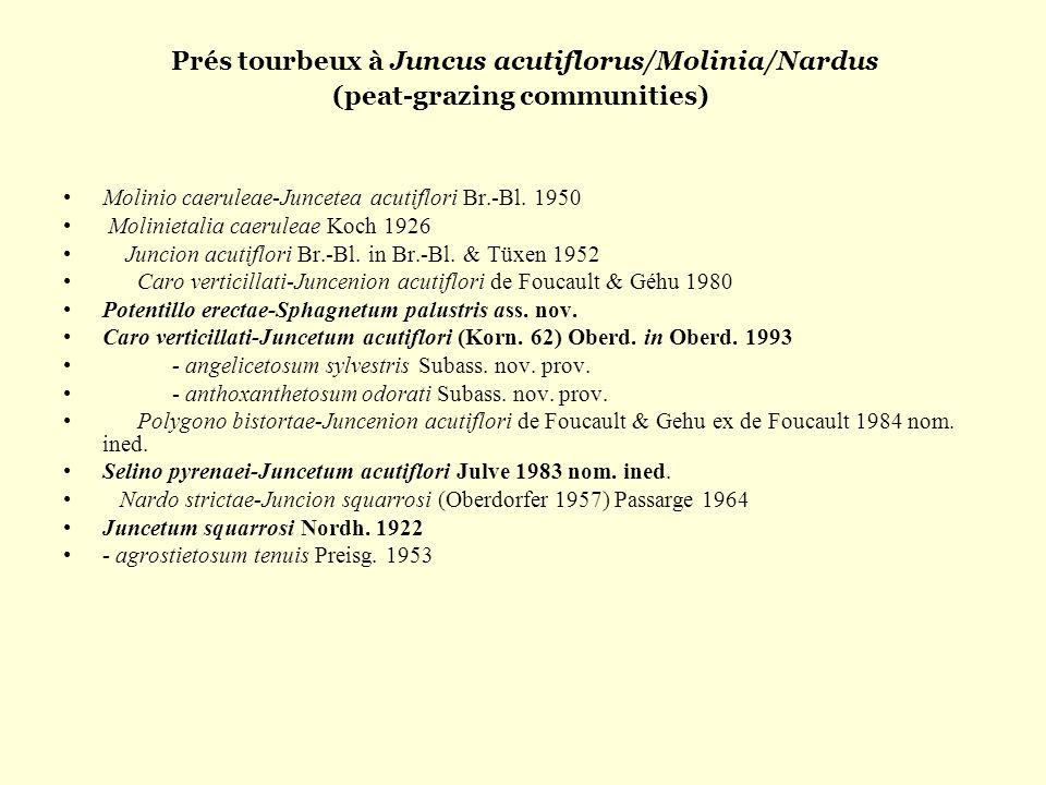 Prés tourbeux à Juncus acutiflorus/Molinia/Nardus (peat-grazing communities)