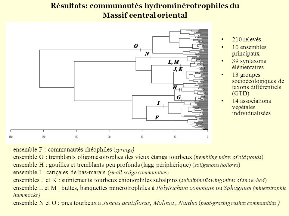 Résultats: communautés hydrominérotrophiles du Massif central oriental