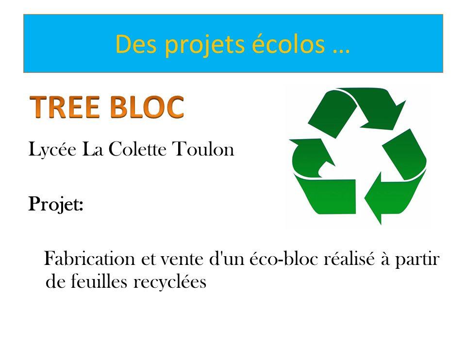 TREE BLOC Des projets écolos …