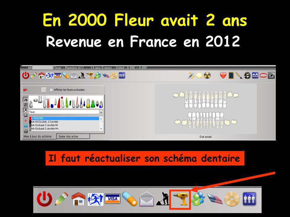 En 2000 Fleur avait 2 ans Revenue en France en 2012