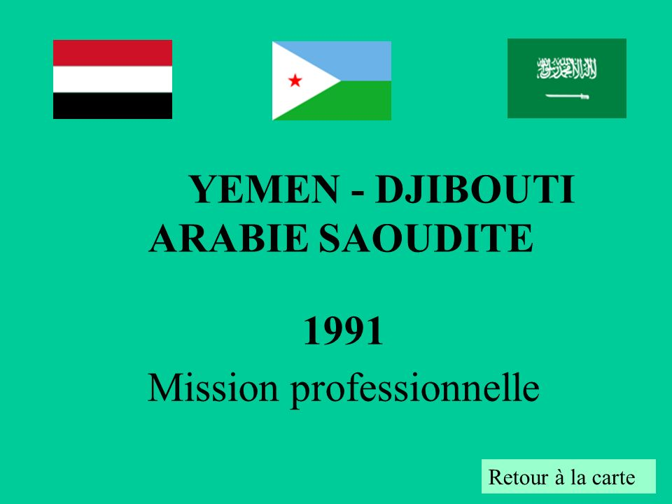 1991 Mission professionnelle