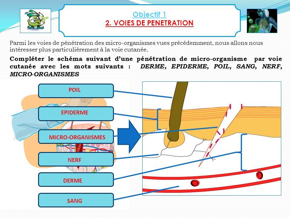 Objectif 1 2. VOIES DE PENETRATION