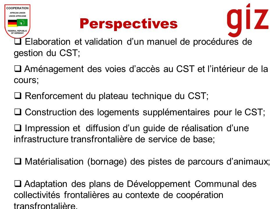 Perspectives Elaboration et validation d'un manuel de procédures de gestion du CST; Aménagement des voies d'accès au CST et l'intérieur de la cours;