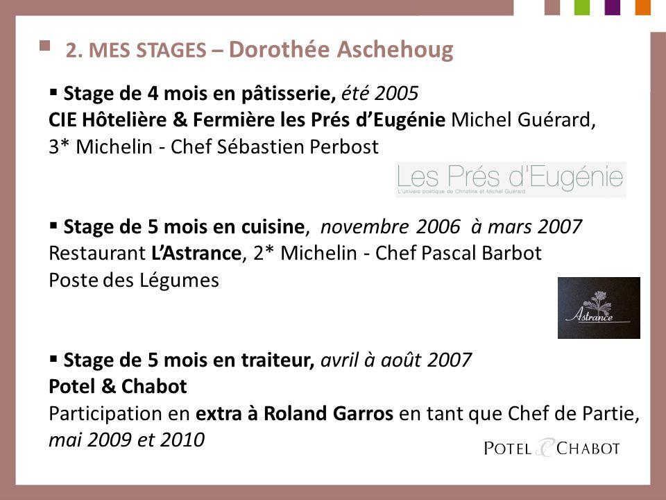 2. MES STAGES – Dorothée Aschehoug