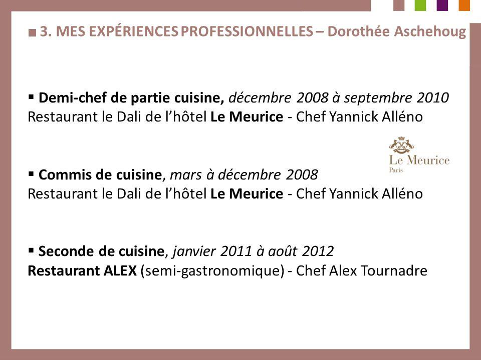 3. MES EXPÉRIENCES PROFESSIONNELLES – Dorothée Aschehoug