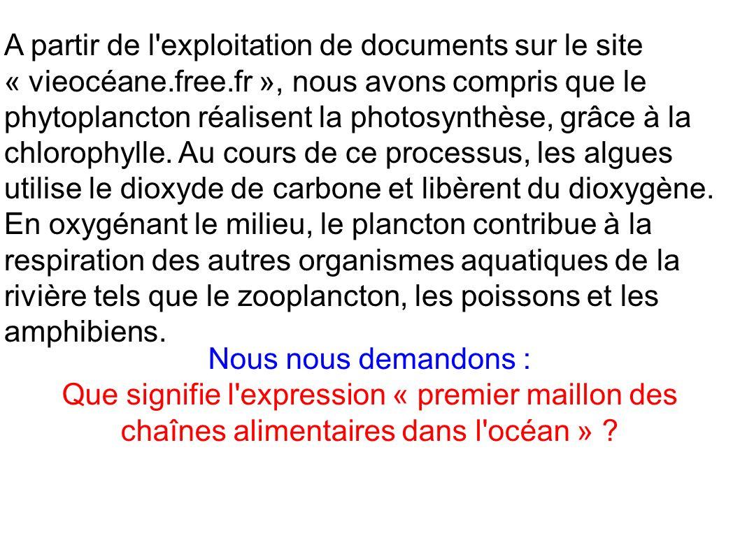 A partir de l exploitation de documents sur le site « vieocéane. free