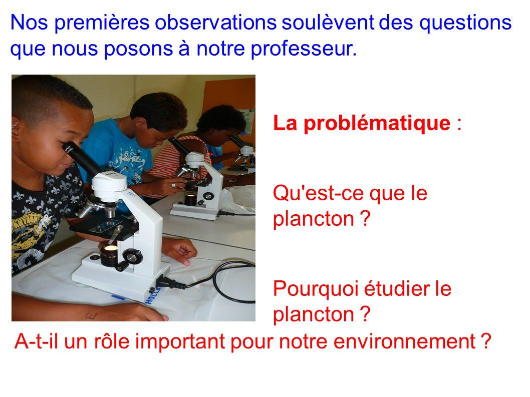 Nos premières observations soulèvent des questions que nous posons à notre professeur.